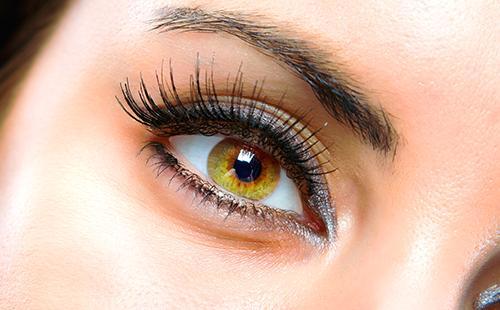 Глаз, словно целый мир